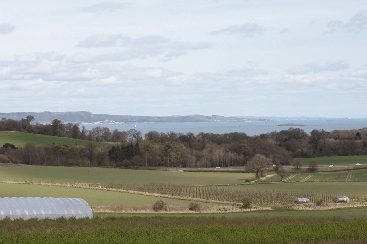View over the fields and the Forth