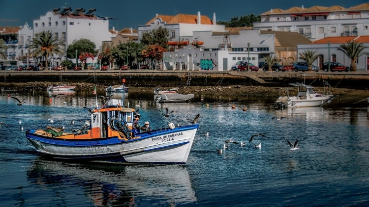 Boat trip in the Algarve