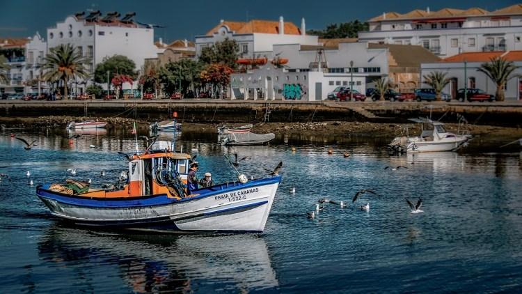 Boat trip in the Algarve