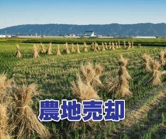 農地を売却する方法とは?必要な手続きや注意点、価格相場、かかる税金などを徹底解説!