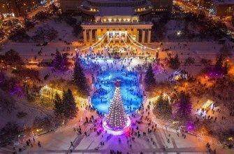 """""""Настоящее искусство - должно возбуждать"""" - чиновники о катке в Новосибирске"""