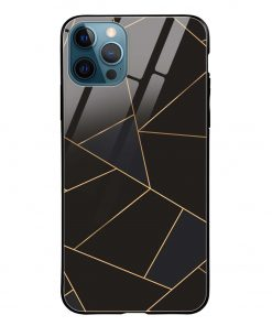 Golden Lines iPhone 12 Pro Max Glass Case Cover
