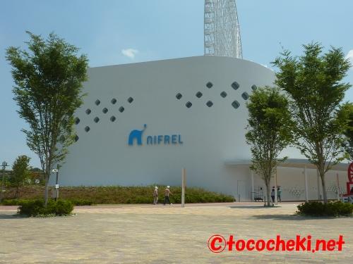 nifrel1354