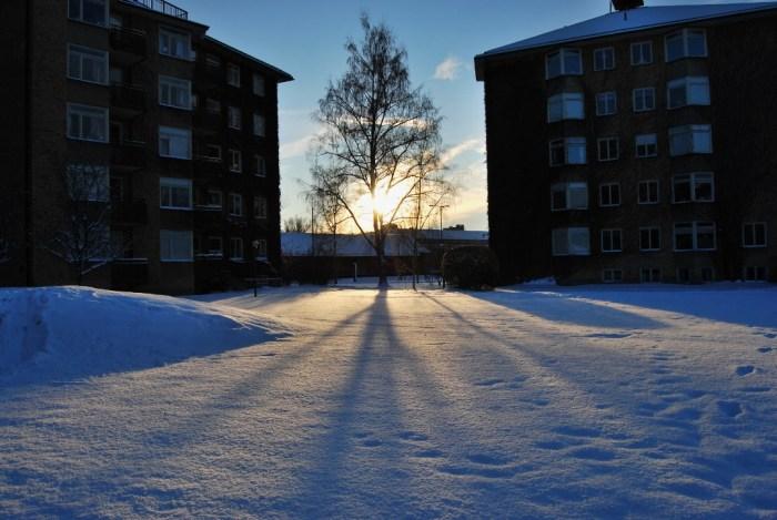 winter between the houses