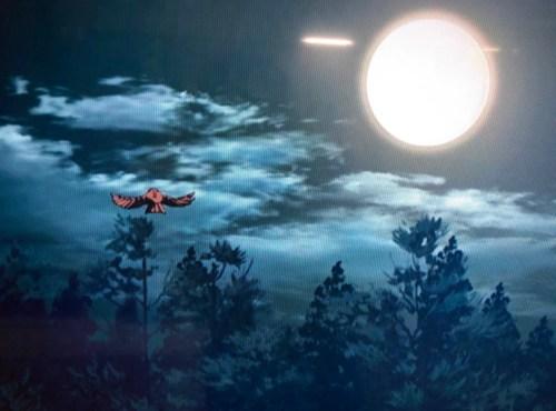 夜空に羽ばたくチュン太郎