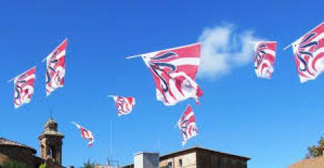 bandiere-in-volo