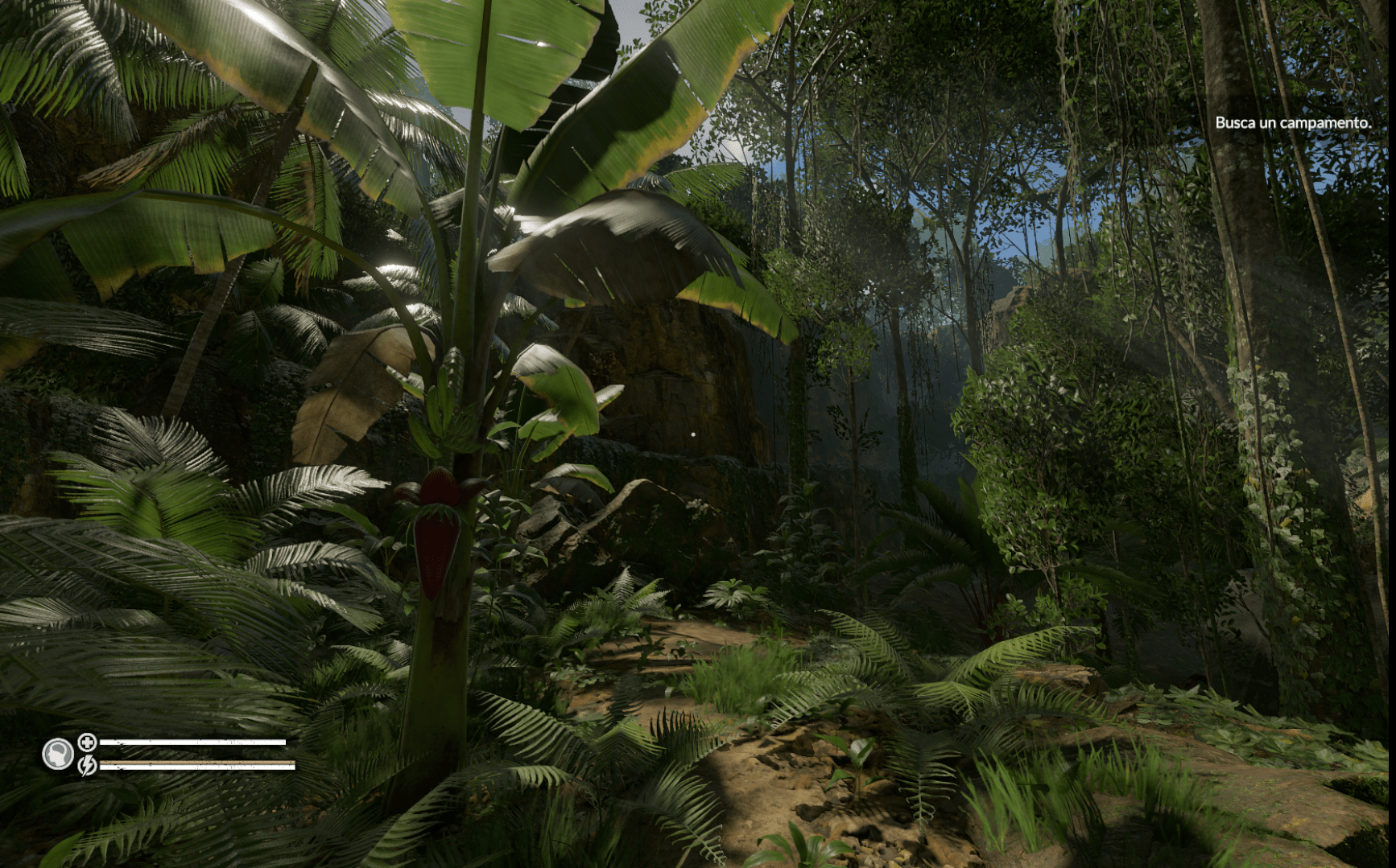 Green Hell Selva