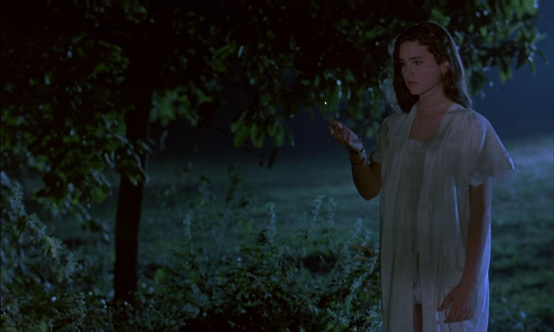 Jennifer siguiendo una luciernaga.