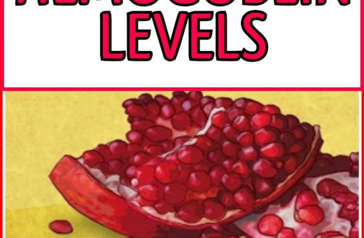 Top-20-Foods-To-Raise-Your-Hemoglobin-Levels