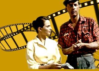 bg-Movies