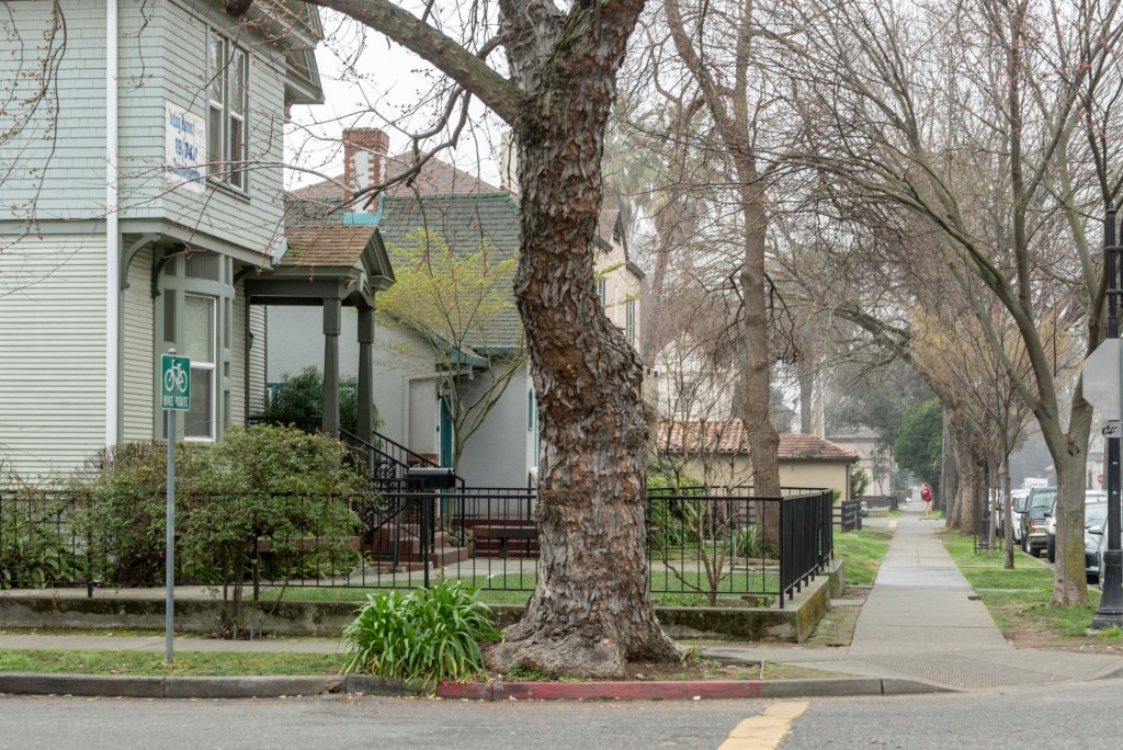 Houses close to the Chico State campus on a foggy February day.