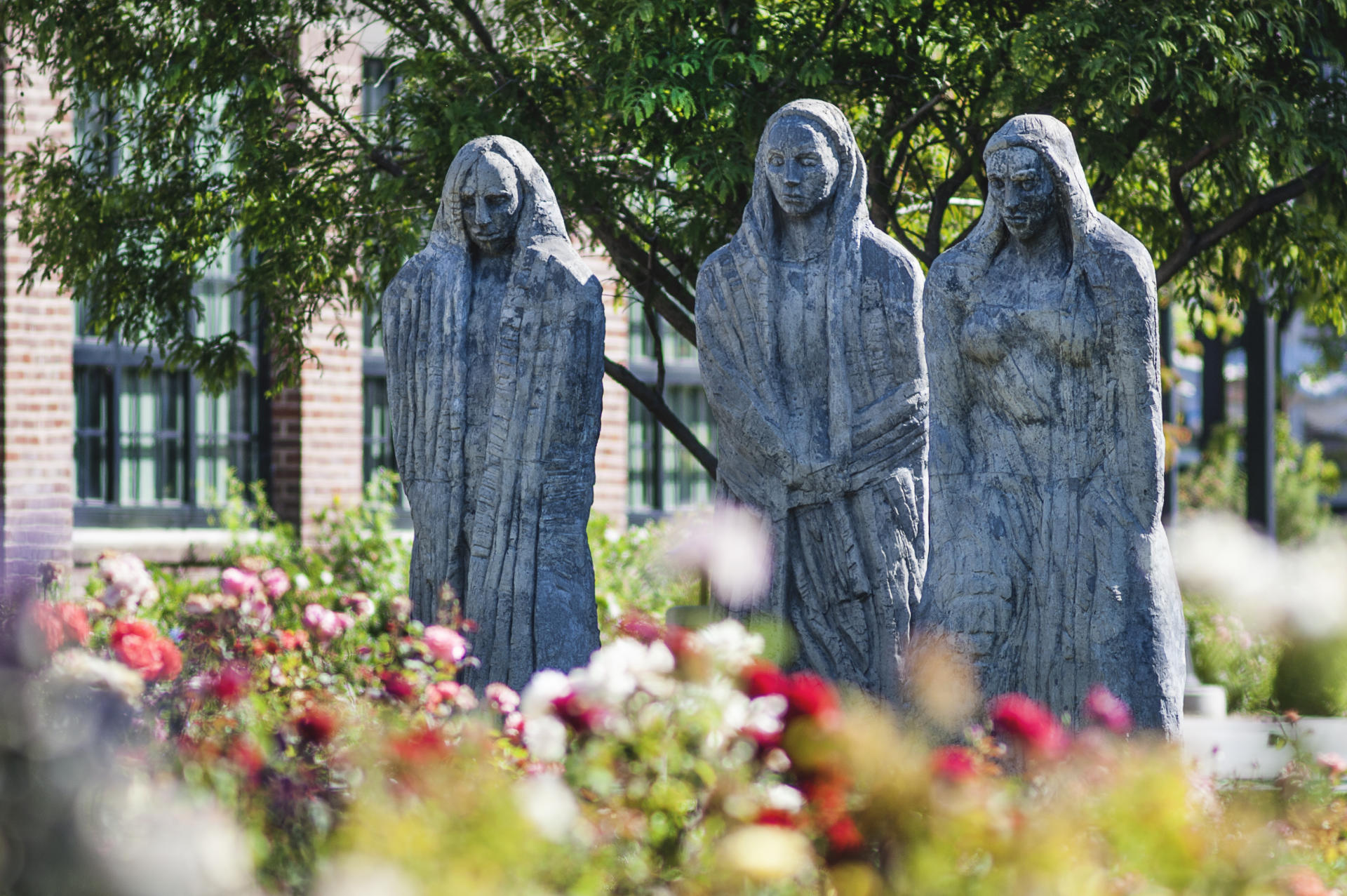 The Three Ladies Statue Sculpture Overlooks The George Peterson Rose Garden  At California State University Chico