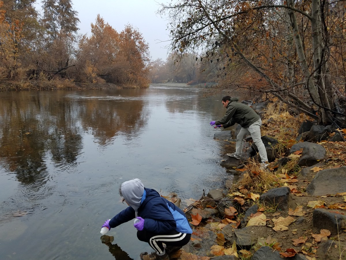Students dressed in warm clothes stand on the bank of a creek to scoop out water.