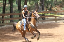 Cassidy Sabral grips the reins with a look of determination as she rides her horse in an arena.
