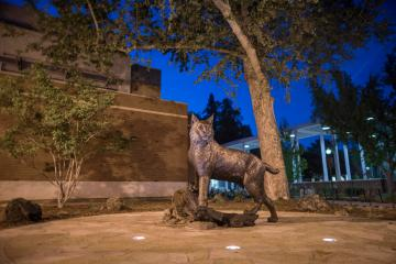 The Wildcat Statue, perched in front of Wildcat Plaza and designed by Washington-based artist Matthew Gray Parker, was unveiled in April 2018.