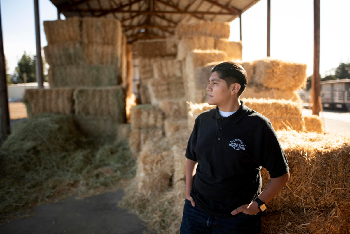 Jonathan Najera stands by some bales of hay.