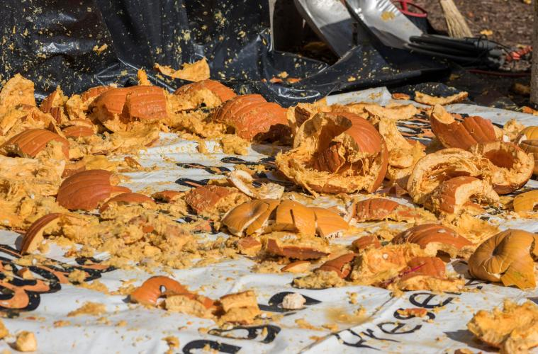 Pieces of smashed pumpkins lie on a tarp during the annual Pumpkin Drop on the Chico State campus.