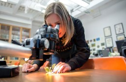 Agriculture major Kristin Quigley peers into a microscope.