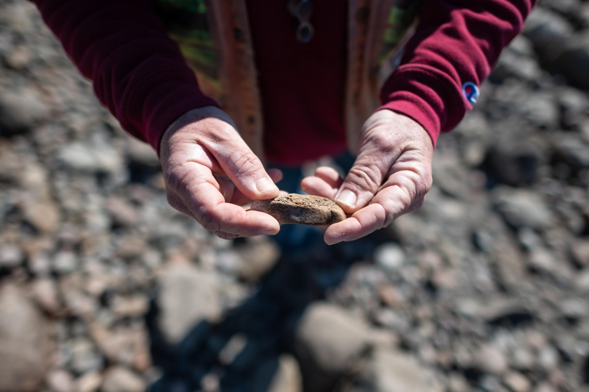 Hands hold down a piece of fossilized bone.