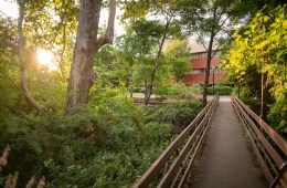 A pedestrian bridge spans a creek surrounded by lush trees and bushes.
