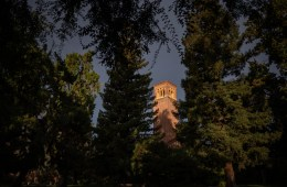 An academic building stands out in sunlight against a darkening sky amongst mature trees.