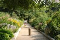 Smithsonian Gardener Has UConn Roots