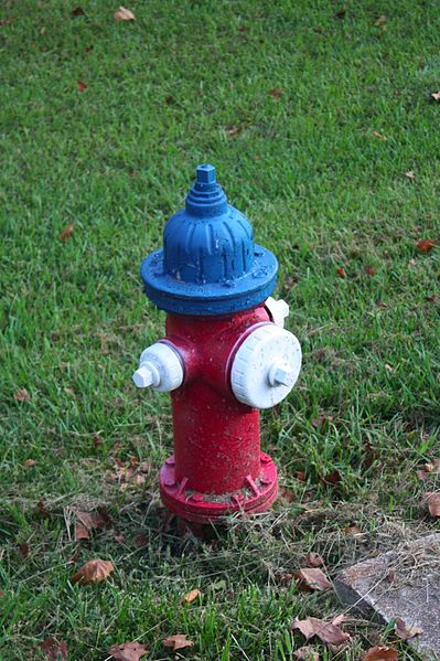 Red Painted Curb Means : painted, means, Hydrant, Colors, Actually, Something