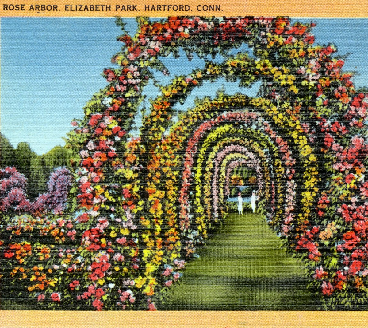 Roses In Garden: June 18: The Nation's Oldest Municipal Rose Garden In