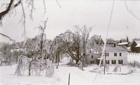 View near the Robbins School in Norwalk after the ice storm of February 1898. Photograph by Marie Kendall. (Connecticut Historical Society)