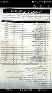 Mianwali Class Four Jobs 2020 in District Education Authority Application Form 1