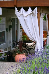 Drop Cloth Outdoor Curtains | Today's Creative Life