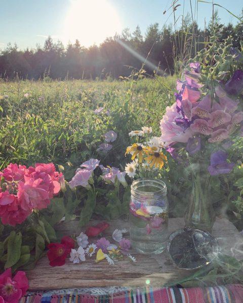 Steps Toward Healing And Restoration