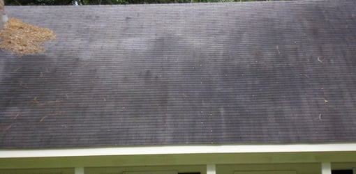 Black stains on roof