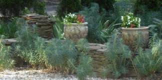 Yard landscaped using drought tolerant plants.