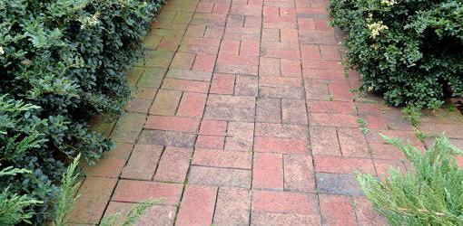 Brick paver walk