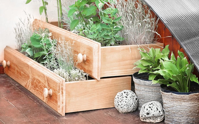 Old drawers used as planters in repurposed rustic garden outside townhome