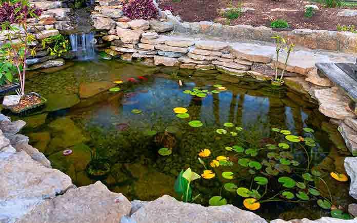 Man-made pond in a beautiful garden