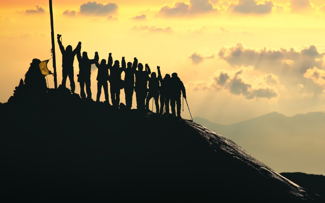How to build a team that will happily move mountains