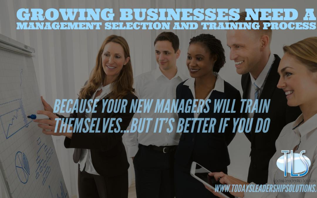 Why growing businesses NEED a management selection and training process