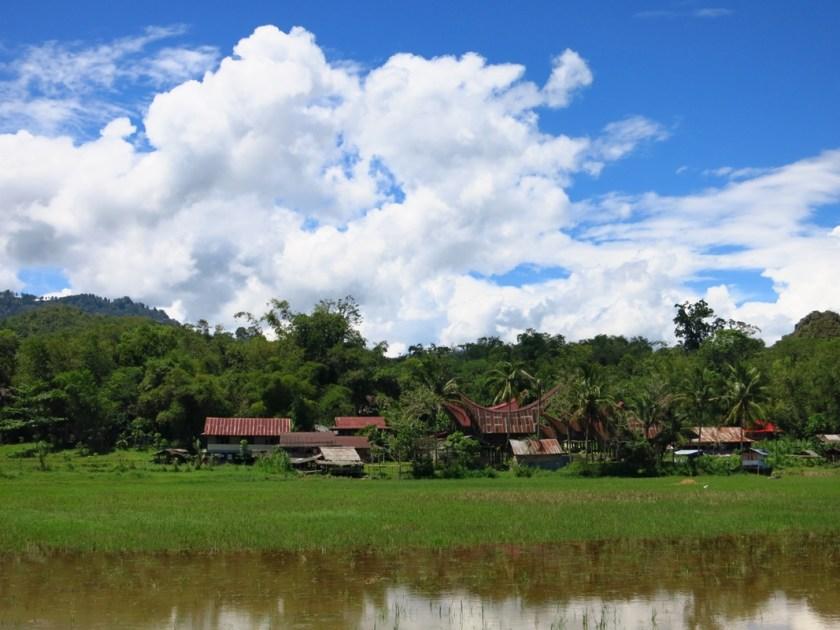 Toraja Häuser Sulawesi