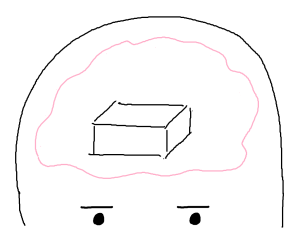 Brain with box no words
