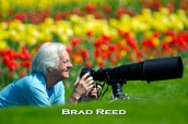 My dad and I always shoot a lot of pictures of each other while out photographing. I got up on a hill and used my 600mm lens to get this shot of my dad with a field of tulips behind him. Holland, Michigan this time of year is a must-see. I promise it will bring a smile to your face! F4 at 1/1000, ISO 100, 600mm lens at 600mm