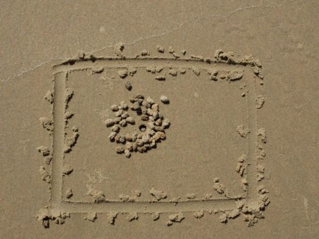 crab poop 4