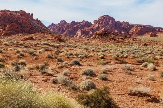003 Valley of Fire
