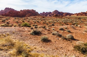 004 Valley of Fire