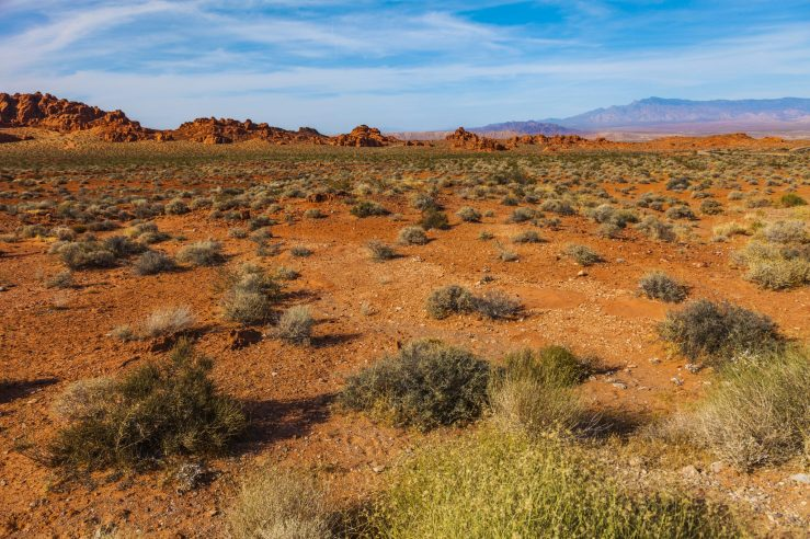 005 Valley of Fire