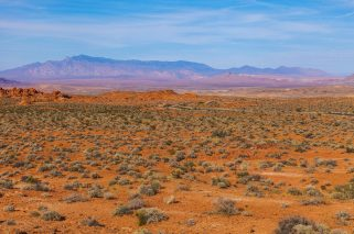 010 Valley of Fire