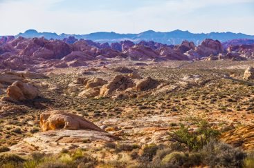 021 Valley of Fire