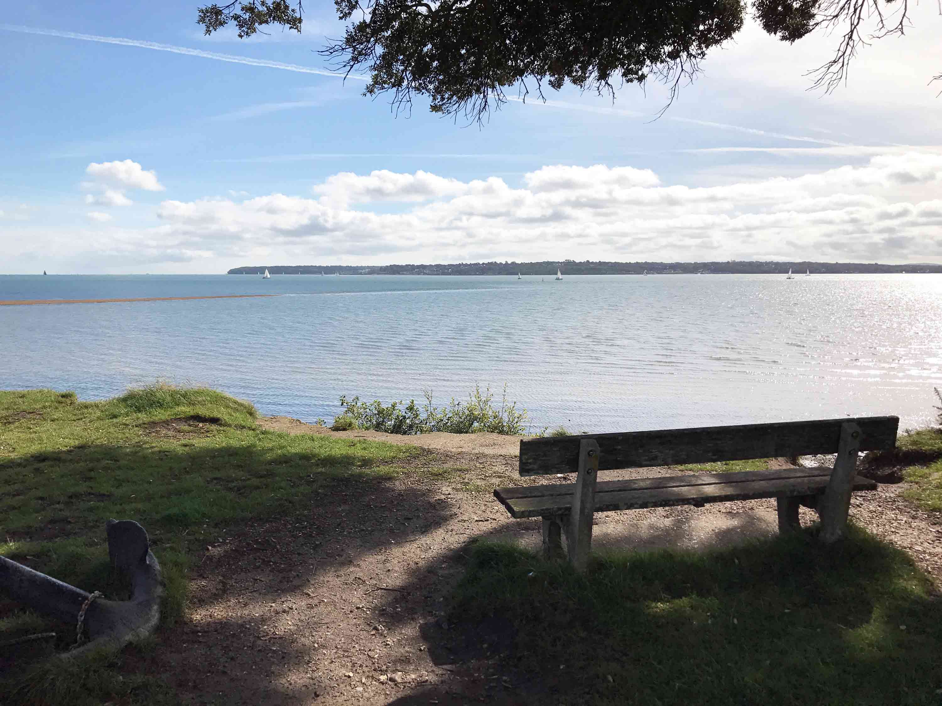 Find Fairies and Fossils at Lepe Country Park, Exbury, New Forest