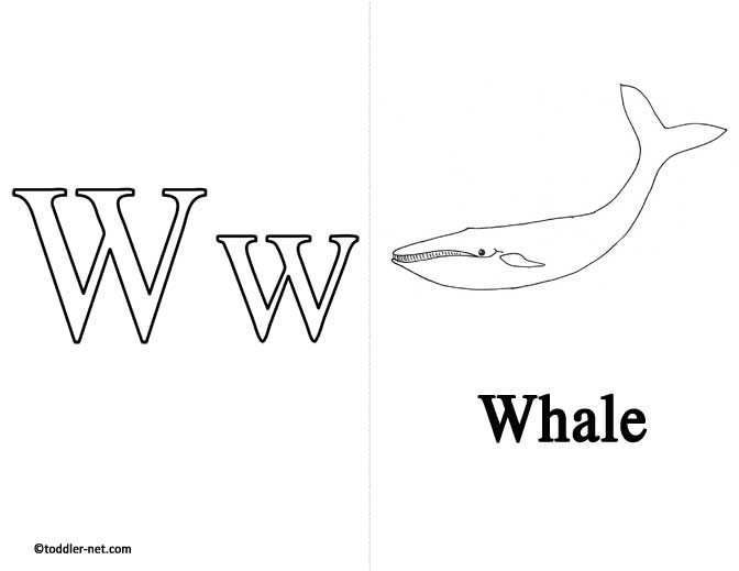 Free Printable Letter W Flashcard and Worksheet
